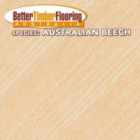 Hardwood Species: Australian Beech