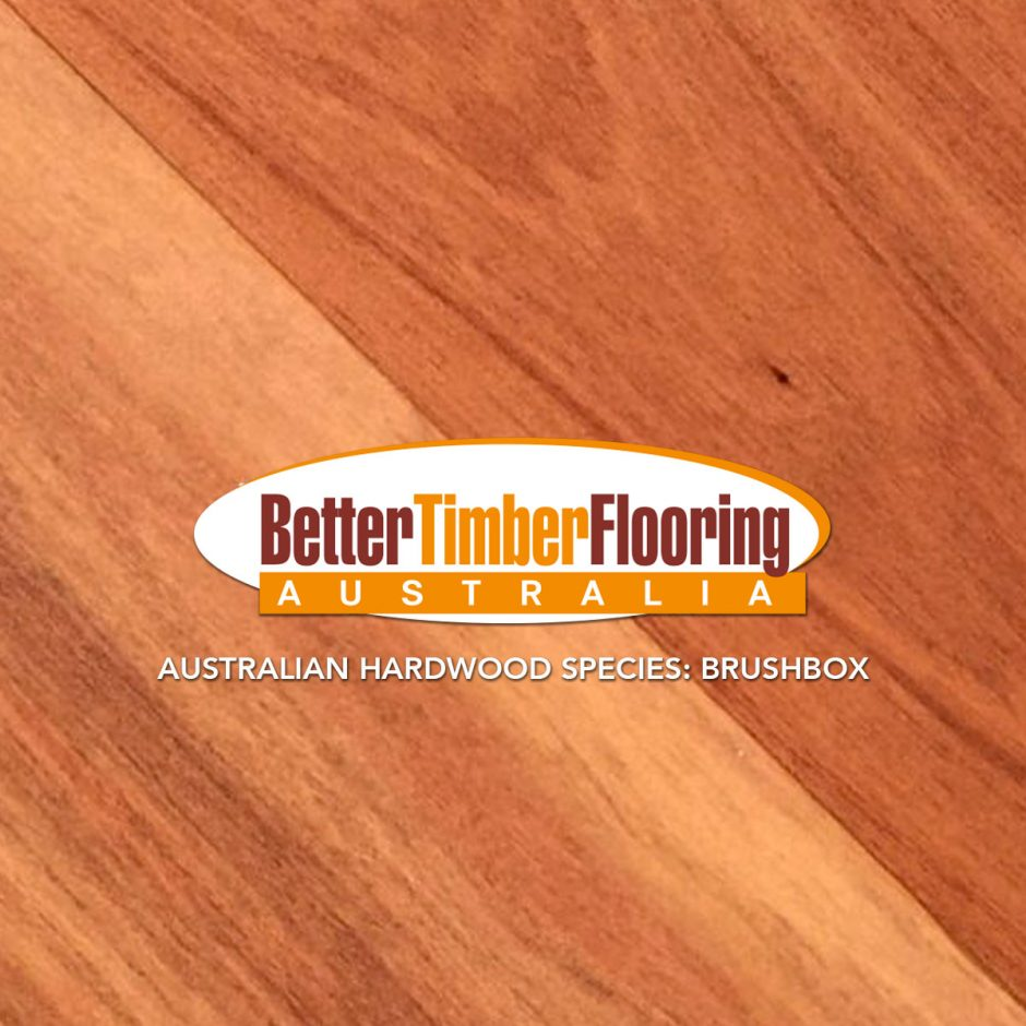 Brushbox Hardwood Species Specification and Technical Data