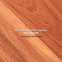 Floorboards of Hardwood Species: Brushbox
