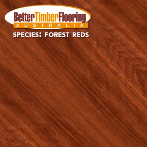Forest Reds. Hardwood Timber Species Specification Data