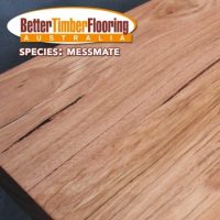 Hardwood Species: Messmate