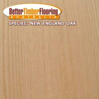 Hardwood Species Used In Flooring: New England Oak