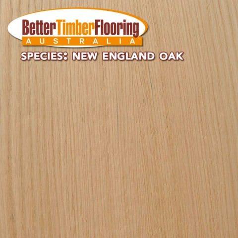 Hardwood Species Used In Flooring: New England Oak