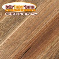 Hardwood Species: Spotted Gum