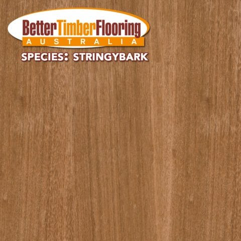 Stringybark Hardwood Timber Species Specification.