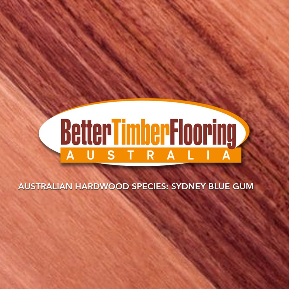 Sydney Blue Gum. Hardwood Species Specification Data