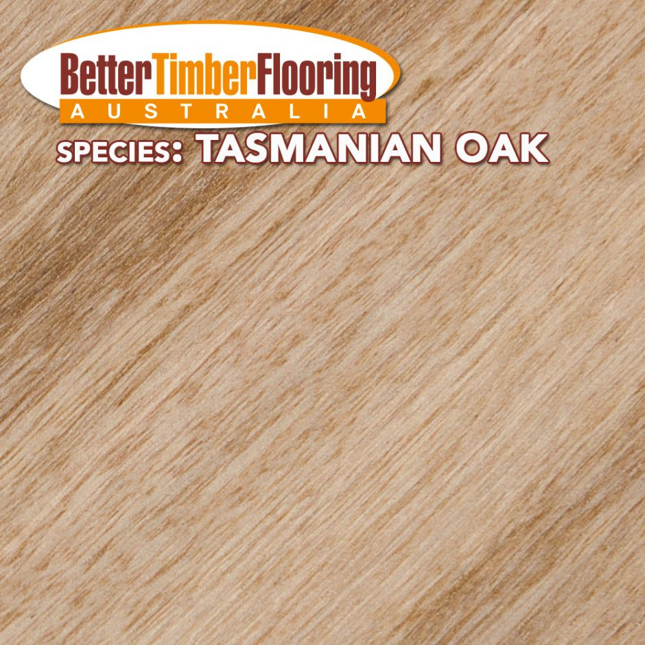 Tasmanian Oak. Hardwood Species Specification Data