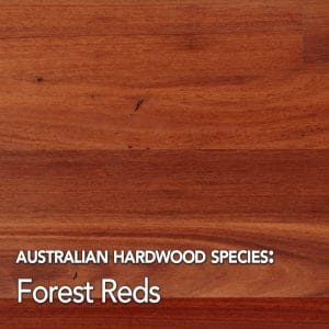 Forest Reds: Australian hardwood species swatch