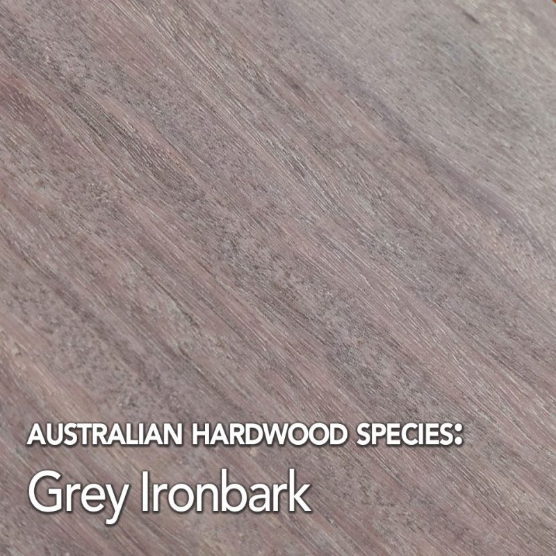 Grey Ironbark Australian hardwood species swatch