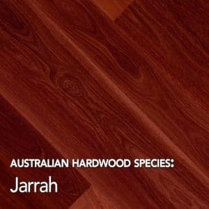 Jarrah: Australian hardwood species swatch