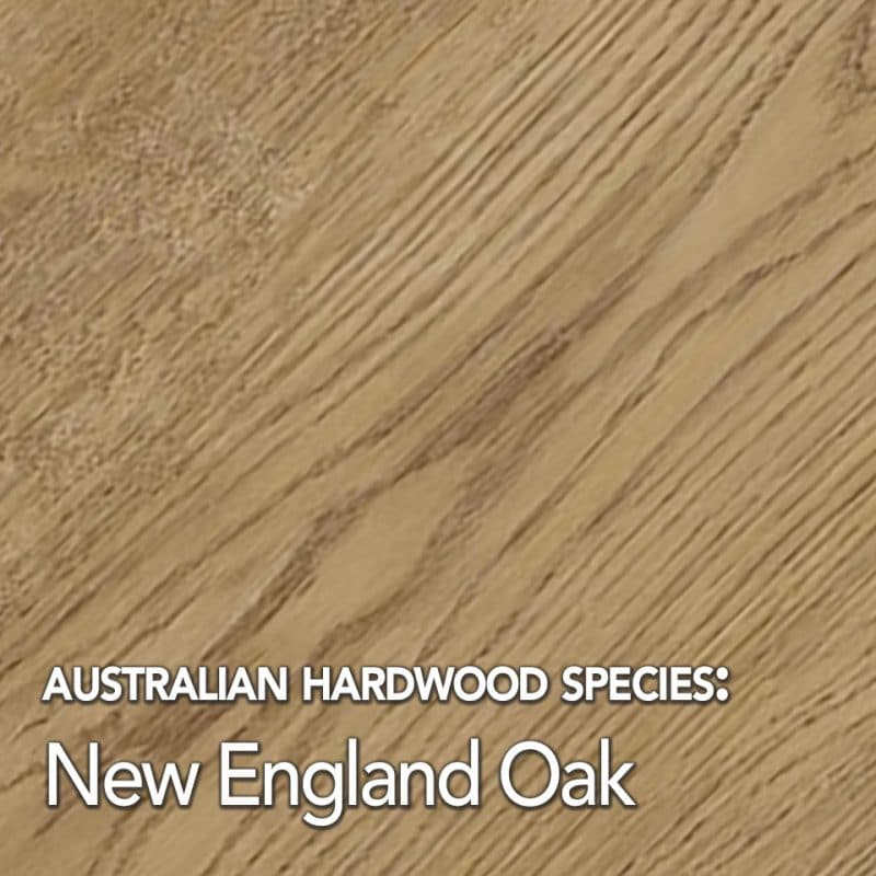 New England Oak: Australian hardwood species swatch