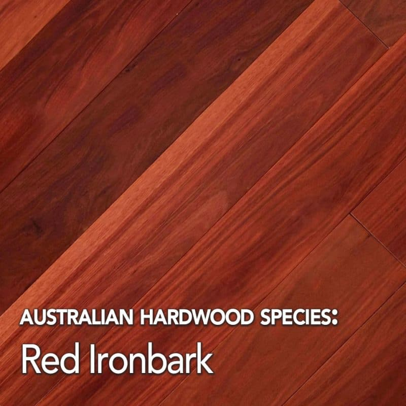 Red Ironbark species swatch