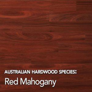 Red Mahogany: Australian Hardwood species swatch