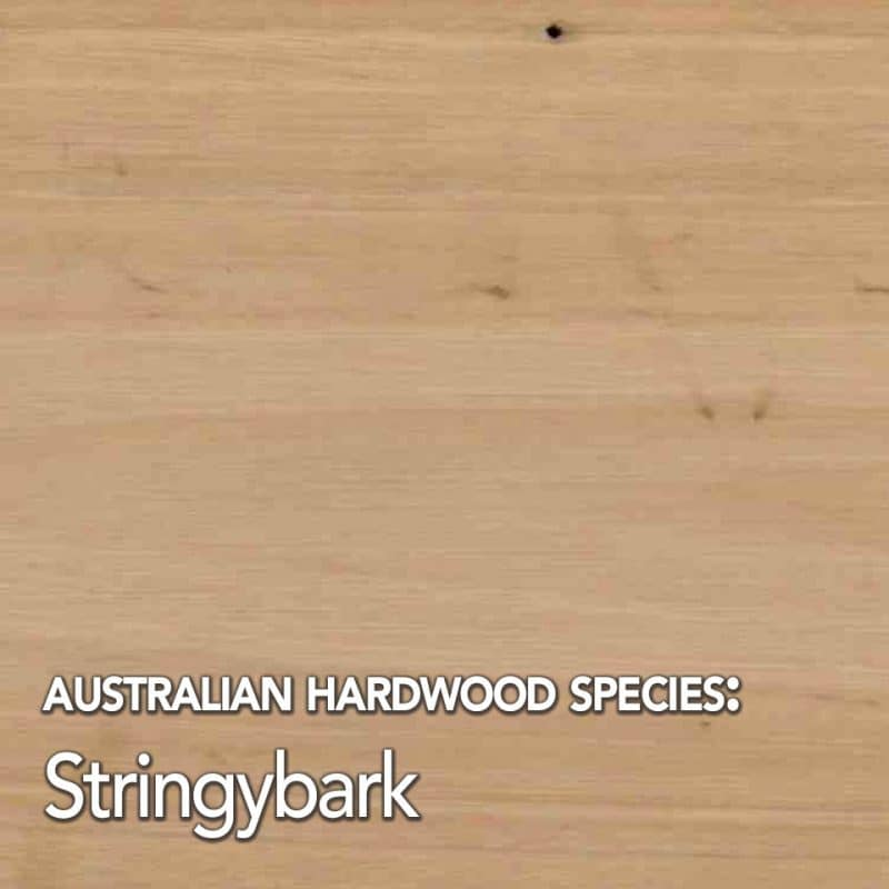 Stringybark species swatch
