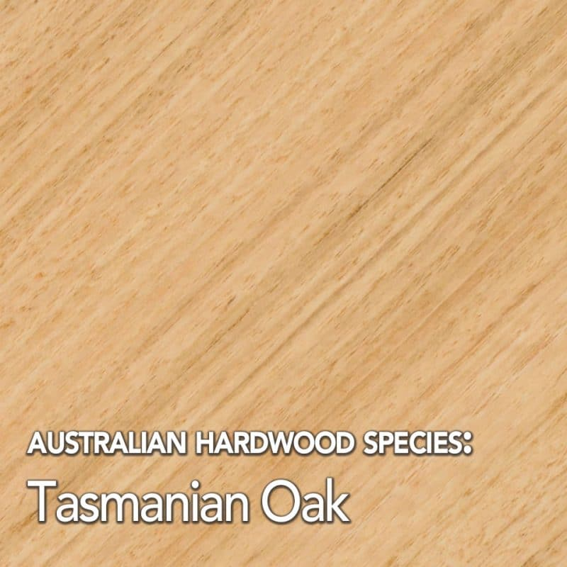 Tasmanian Oak: Australian Hardwood species swatch