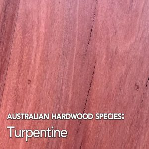 Turpentine: Australian Hardwood species swatch