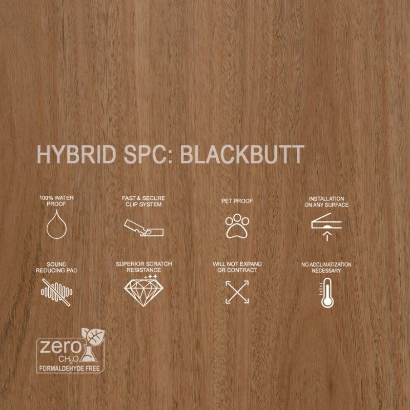 Features of Hybrid SPC Blackbutt