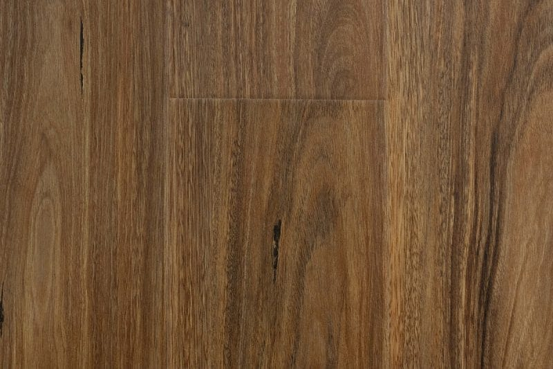 Laminate Spotted Gum Swatch